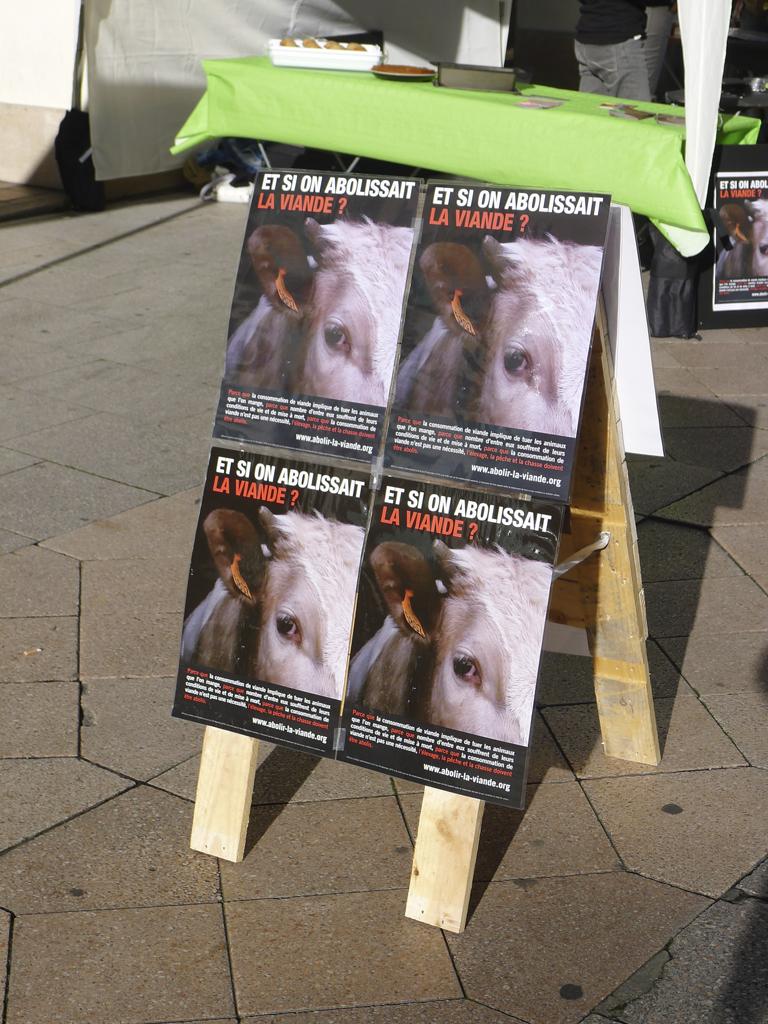 """Stand """"Et si on abolissait la viande ? """" — Angers — 31 octobre 2015"""