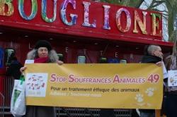 "Action ""Cirques avec animaux Angers, ça suffit !"""