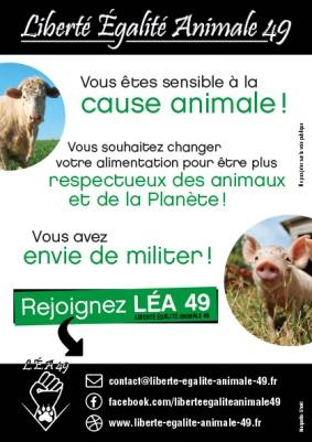 """Rejoignez """"Liberté Égalité Animale 49"""""""